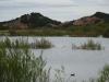 Laguna degollada